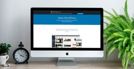 why to choose wordpress website development for business