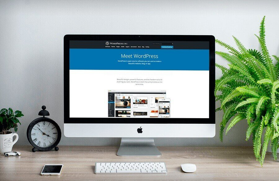 Top Reasons to Use WordPress Website Development for Business